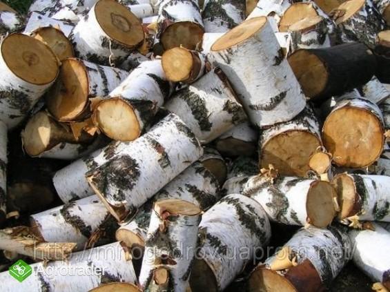 Drewno - zdjęcie 1
