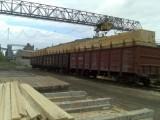 Ukraina.Drewno opalowe 15 zl/m3,zrzyny 1 zl/m3