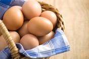 Sprzedam jaja wiejskie Warszawa i okolice