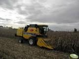 koszenie kukurydzy na ziarno 350zł