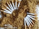 Tytoń,okazja:69zł/1kg,Marlboro,L&M,Route 66