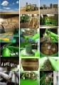 Ofeujemy linie do produkcji pelletu oraz brykietu