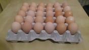 Jaja, jajka wiejskie
