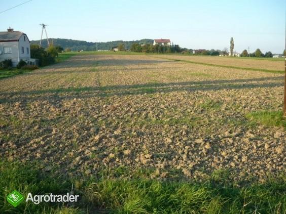 Dzialka budowlano-rolna - zdjęcie 3