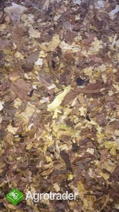 Tytoń strips. Całe liście. American Blend. Virginia - zdjęcie 3