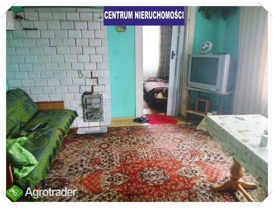 Siedlisko pod Augustowem-nowa atrakcyjna cena - zdjęcie 4