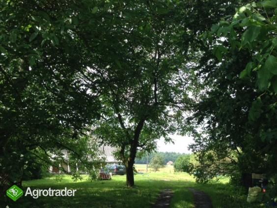 gospodarstwo rolne/ogrodnictwo  - zdjęcie 5