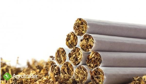 tani tyton papierosowy kg  65zł KG-ODBIOR OSOBISTY,WYSYŁKA 534-438-380 - zdjęcie 2