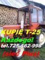 Kupię Władymirca t-25 MF235, MF255, MTZ82, MTZ80, Pronar, Białoruś, LT