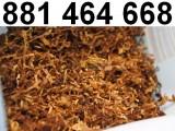 Tani tyton gotowy do nabijania w gilzy. Tyton średni, słaby i mocny!