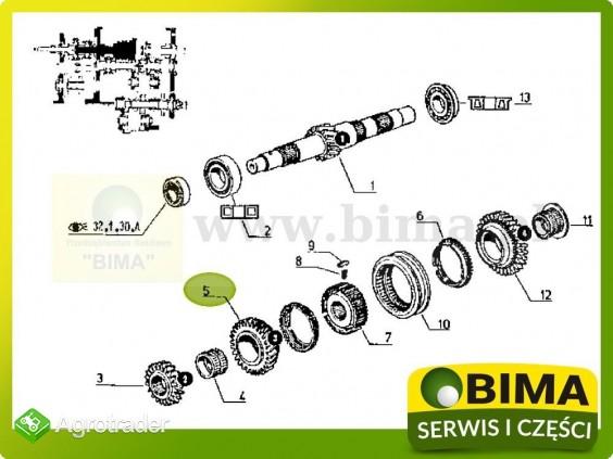 Używane koło zębate 3 biegu z29 Renault CLAAS 120-14 - zdjęcie 2