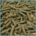 Prasa do tłoczenia oleju ślimakowa (pelleciarka,peleciarka) ze stacją