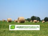 Dzierżawa gruntu rolnego / dopłaty unijne