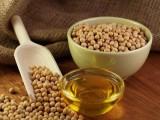 Olej sojowy z Ukrainy po cenach producenta