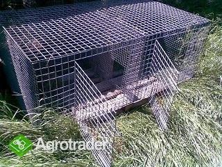 Sprzedam klatki dla zwierząt - zdjęcie 1