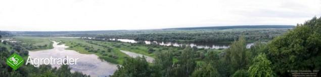 Ukraina.Staw rybny35ha+torfowiska30ha.Wydzierzawie - zdjęcie 1