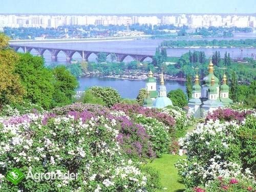 Ukraina,Kijow.ZapraszamyInwestorowZainteresowanych - zdjęcie 4