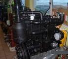 Silniki do BELARUS - MTZ