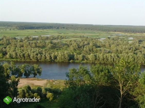 UkrainaGospodarstwa i grunty rolneSprzedaz,wynajem - zdjęcie 1