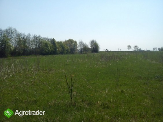 ziemia rolno-budowlana 3,32 ha gmina Płońsk - zdjęcie 1