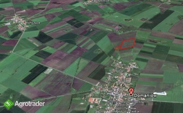 Ziemia rolna na sprzedaż - 5 ha - wieś Domaniów