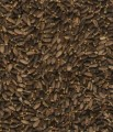 Ostropest Plamisty Milk Thistle seeds Tanio